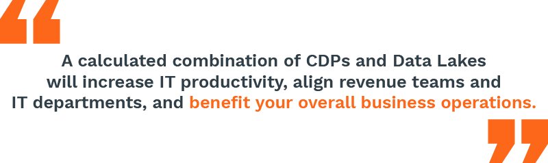 CDPs and Data lakes will increase IT productivity