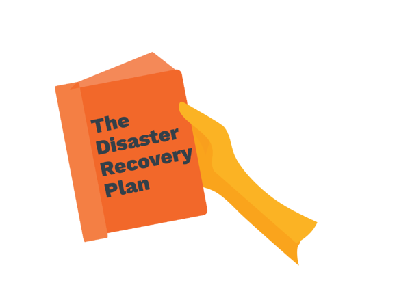 """book """"the disaster recovery plan"""""""