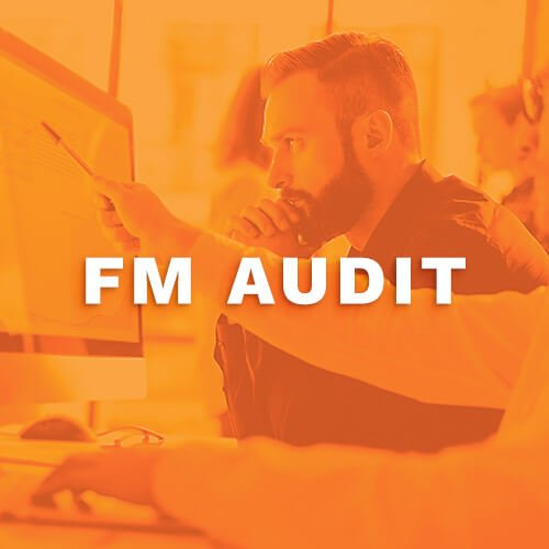 FM-Audit-compressed