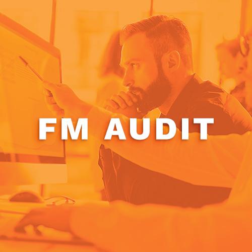 FM-Audit